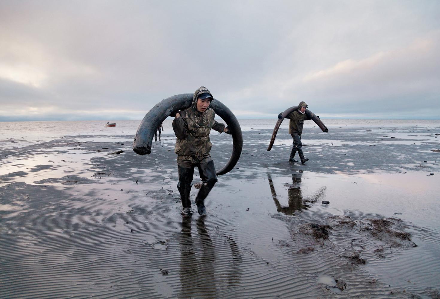 Mammoth Tusk Hunters photo by Evgenia Arbugaeva
